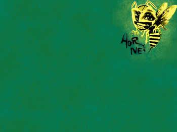 hornet 1024×768.jpg